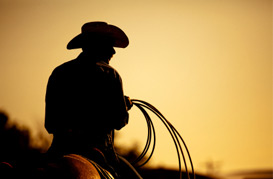 Cowboy On Horse Holding Rope