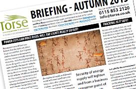 Torse Briefing Autumn 2013